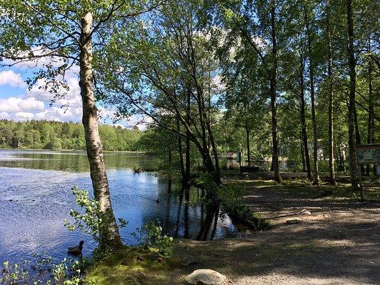 Fontins naturreservat