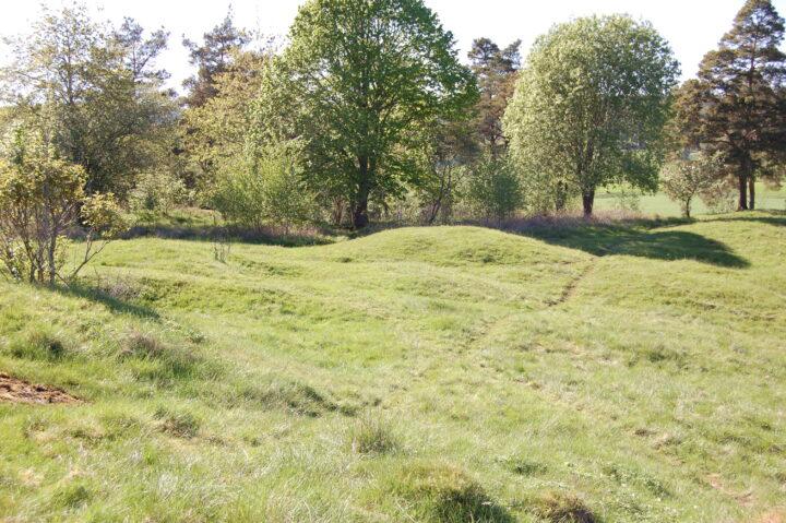 Götaälvdalens största vikingatida gravfält