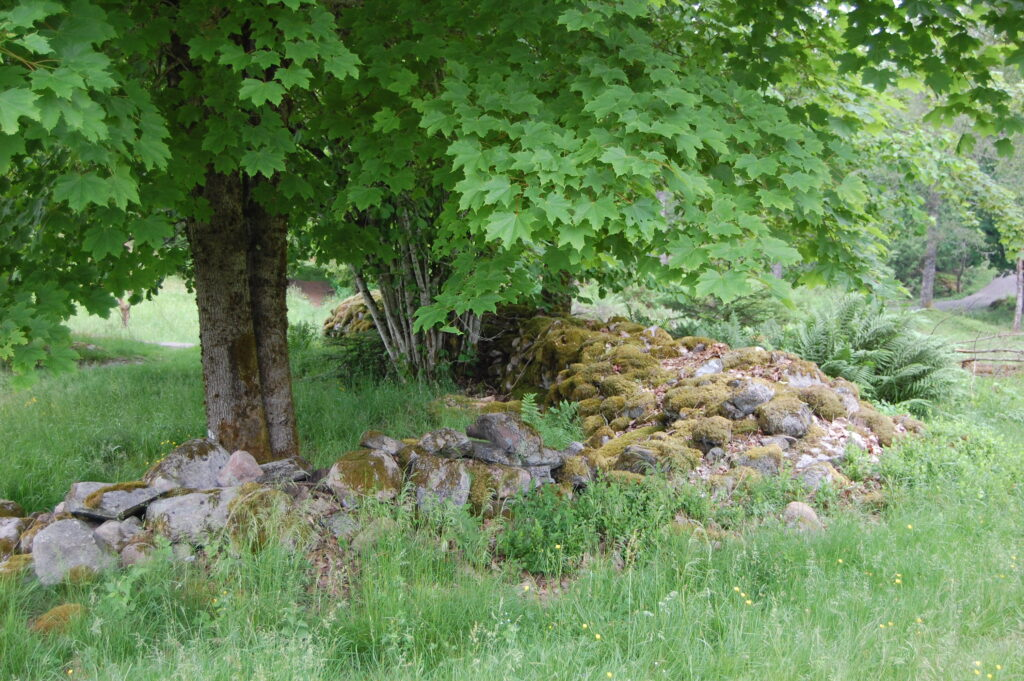 Idåsens naturreservat ett populärt utflyktsmål